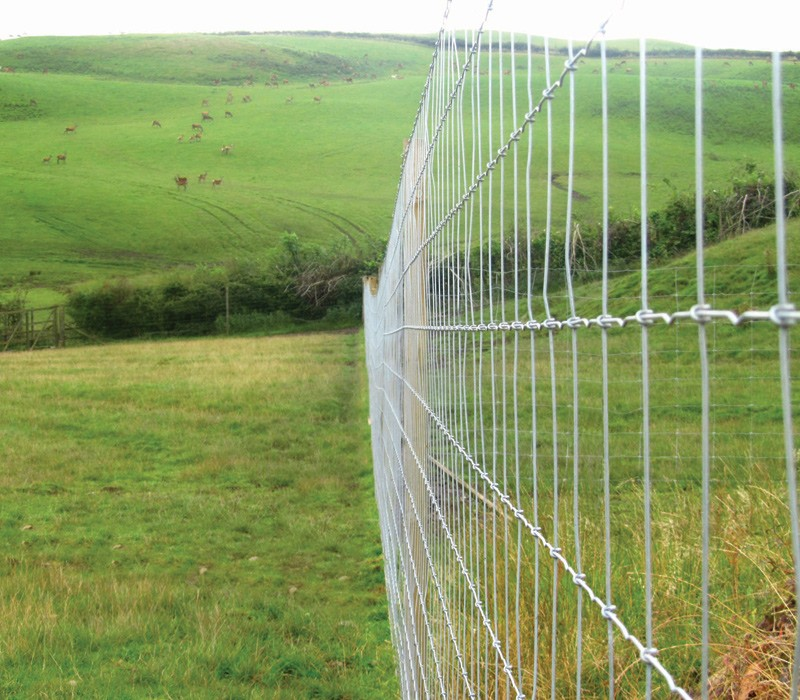 Stock-Fence-Category-Picture